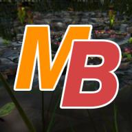 MedinBurnic